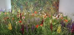 Anita Duller & Hannah Stippl (The Flowerbeds) Cornucopia3