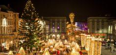 Weihnachtsmarkt am Hauptplatz (c) Alex Sigalov